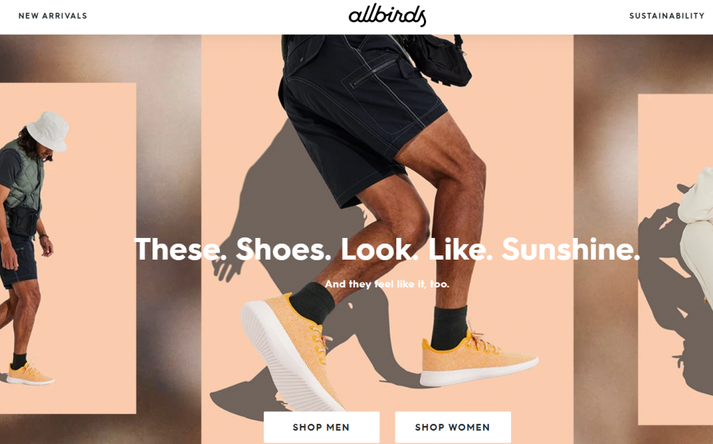 Allbirds Shoes Eco Friendly Products