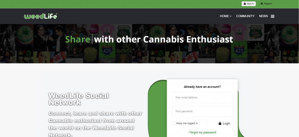 WeedLife Cannabis Business Social Networks